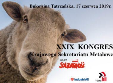 obraz dla wpisu: XXIX Kongres Sekretariatu Metalowców
