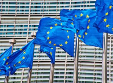 obraz dla wpisu: Europejski Zielony Ład to gospodarczy sabotaż